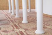 White columns in front of the house. — Stock Photo
