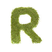 Green alphabet, letter R — Stock Photo