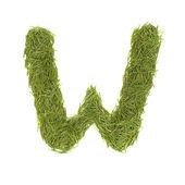 Green alphabet, letter W — Stock Photo