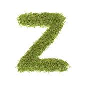 Green alphabet, letter Z — Stock Photo