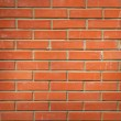 Brick wall — Stock Photo #5921580