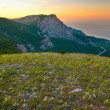 Mountains and the field of yellow flowers. Sunset. - Stock Photo
