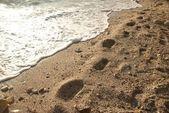 在沙滩上的脚印 — 图库照片