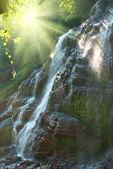 водопад в лесу — Стоковое фото