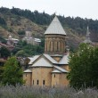 Churches and domes of Tbilisi, view to historical part of the capital of Re — Stock Photo