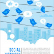 Social network background with birds and icons — Stock Vector