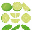 Stock Vector: Lime icons