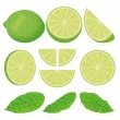 Lime icons — Stock Vector