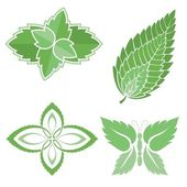 Mint leaves icons — Stock Vector