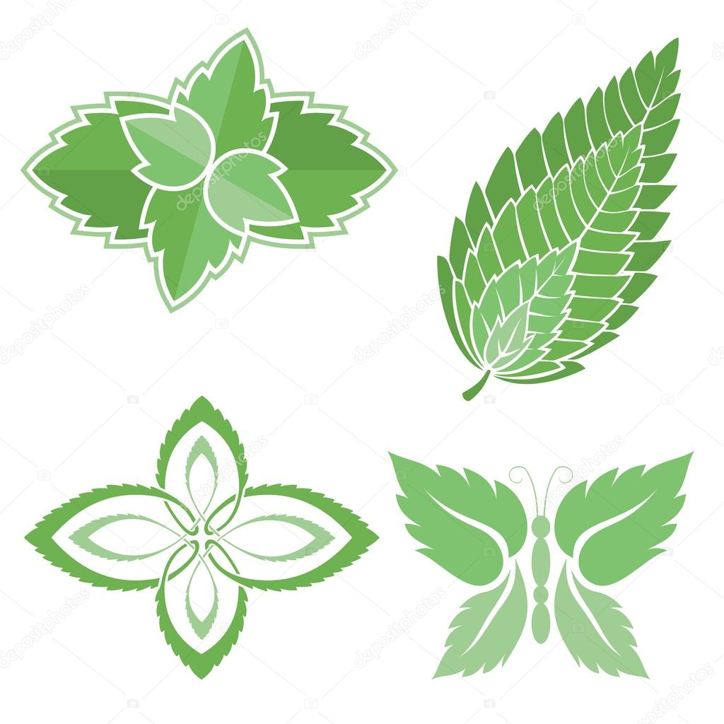 Four green mint leaves icons isolated on white background. — Stock Vector #6737610