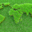 Royalty-Free Stock Photo: World map of grass