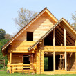 Ecological wooden cottage — Stock Photo #6448385