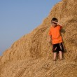 Boy stands on a large haystack — Stock Photo #5460008