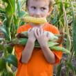 Boy with the corn in his teeth — Stock Photo #5460038