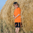 Boy stands on a large haystack — Stock Photo #5460040