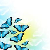 Mariposas azules — Foto de Stock
