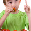 Boy with tomatoes — Stock Photo