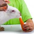 Boy gives the rabbit a carrot — Stock Photo