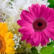 Bouquet of beautiful flowers - Stock Photo