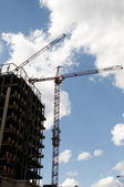 Giant Crane — Stock Photo