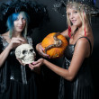 Stock Photo: Witches with Snake and Skull