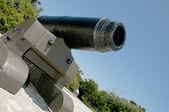 Civil War Cannon — Stock Photo
