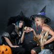 Stock Photo: Witches with Snake
