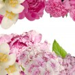 Decorative background with flowers — Stock Photo