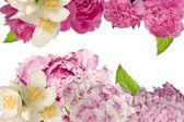 Fondo decorativo con flores — Foto de Stock