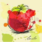 Tomate. — Vector de stock