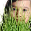 Child and grass closeup, concept — Stock Photo