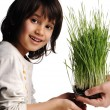 Human hands, floral giving isolated, grass concept and happy child — Stock Photo