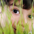 Kid eyes closeup grass plant — Stock Photo #6150517