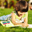 Young boy outdoors on the grass reading a book, writting and drawing - Stockfoto