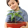 Closeup portrait of a beautiful happy little child holding plant — Stock Photo