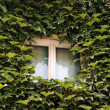 Window in rural house — Stock Photo