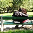 Young couple in love, sitting in nature on bench: lovers in park — Stock Photo