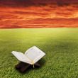 Book in the air against green panoramic nature landscape - Stock Photo
