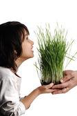 Insan eli, çiçek veren izole, kavramı çimen — Stok fotoğraf