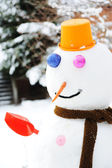 Winter snowman, snow show — Stock Photo