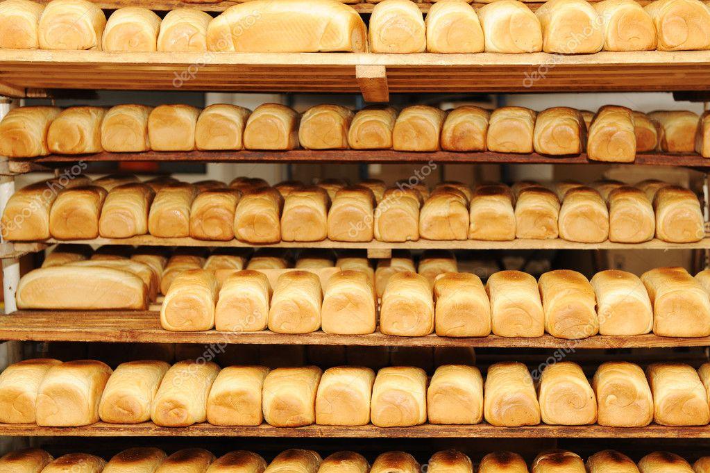bread bakery business plan in nigeria the yoruba