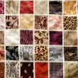 Different various types of fabric background, oriental ornament — Stock Photo