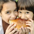 Closeup of two children eating sandwich in nature together, healthy food, c — Stock Photo