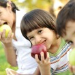 Small group of children eating apples together, shalow DOF — Stock Photo