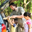 Stock Photo: Family with car in nature