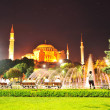 Istanbul, gorgeous night scene — Foto de Stock