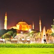 Istanbul, gorgeous night scene — Foto Stock