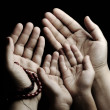 Praying and teaching, child and adult praying together — ストック写真 #6212609