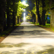 Path between night and daylight — Foto de Stock