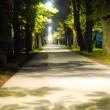 Path between night and daylight — Stok fotoğraf